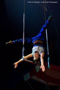 Circus van Sinterklaas, 2 voorstellingen: 13.00 u. en 16.00 u. @ GOUDasfalt